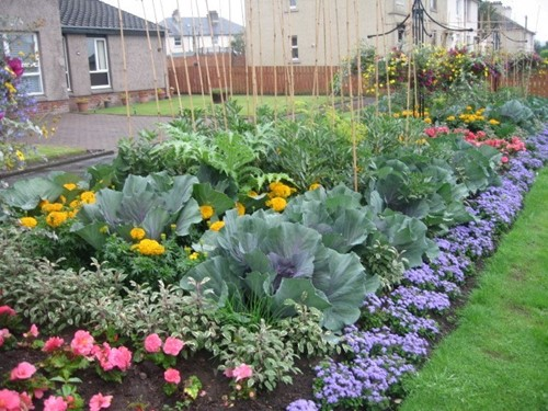 Edible Border Glasgow Road