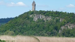 Wallace Monument from River
