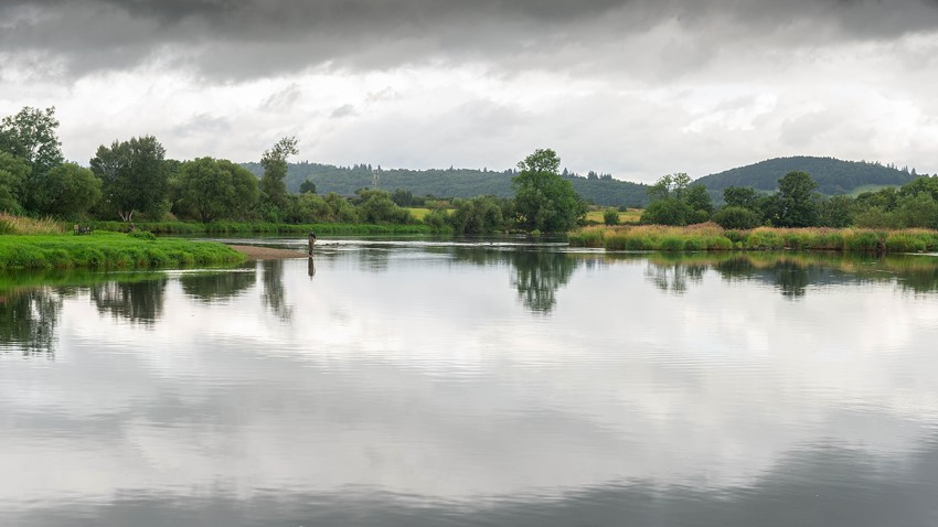 Image of Stirling River Scenery
